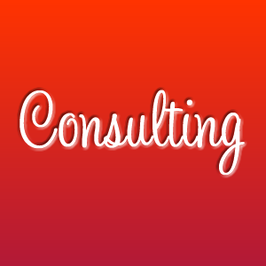 Consulting Session - up to 2 hours